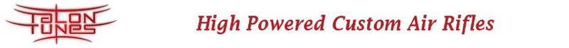 Talon Tunes Logo
